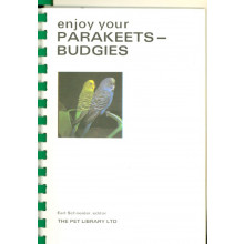 Enjoy Your Parakeet Budgies